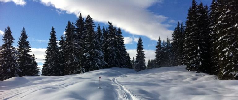 Snowshoeing tracks in Schruns, Austria