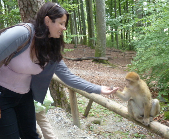 Me feeding a Barbary macaque