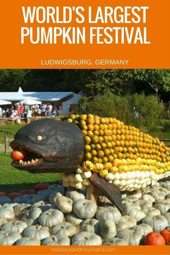5 reasons to visit the world's largest pumpkin festival in Ludwigsburg,Baden-Württemberg, Germany. Come see for yourself what 450,000 pumpkins looks like.