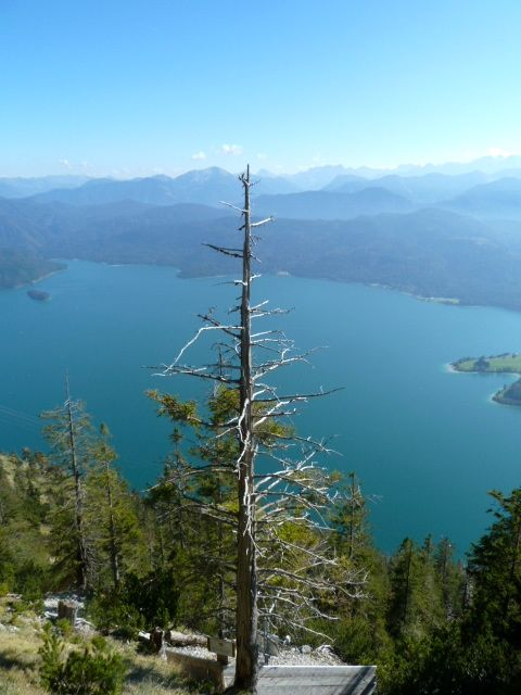 View of the Walchensee from the Herzogstand in Bavaria, #Germany