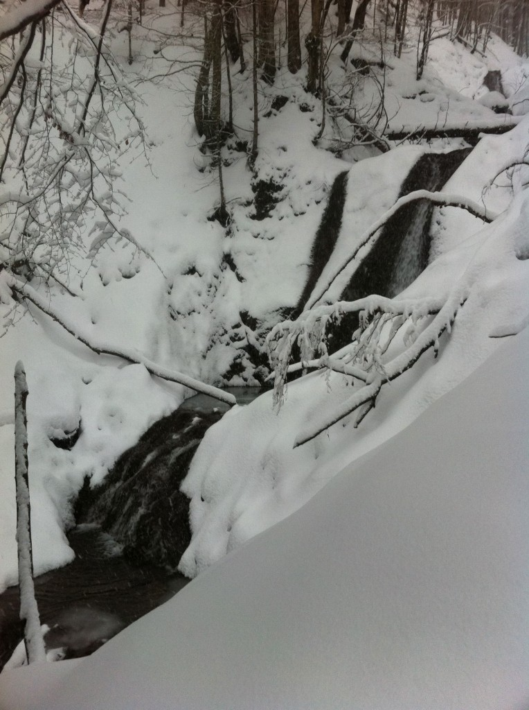 snowshoeing in a winter wonderland in Bavaria, Germany