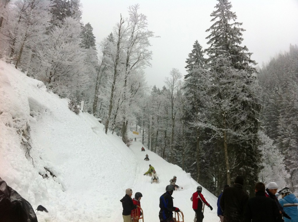Unsurprisingly, the Wallberg is a popular spot for sledding. Go early to avoid lines.