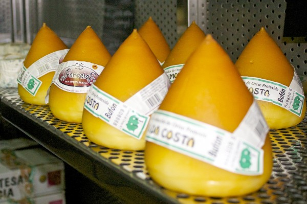eat like a local, local cheeses found in Barcelona, Spain