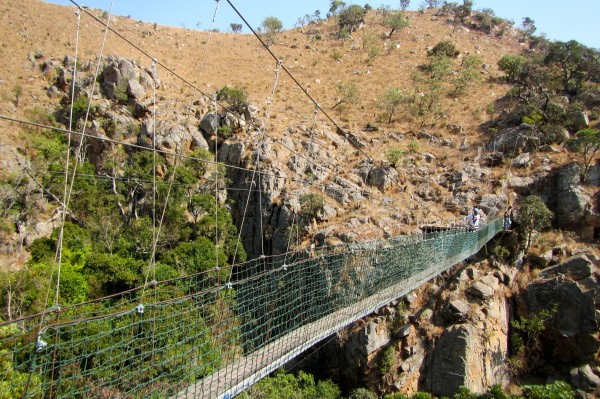 The suspension bridge on the Malolotja Canopy Tour in Swaziland