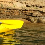 Kayaking with Crocs in Katherine Gorge