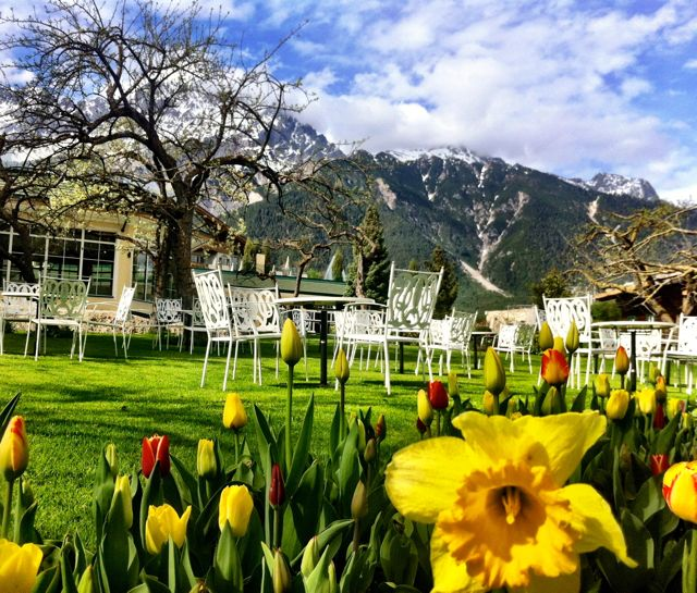 Flowers and mountains at the Alpenresort Schwarz in Tyrol, Austria.