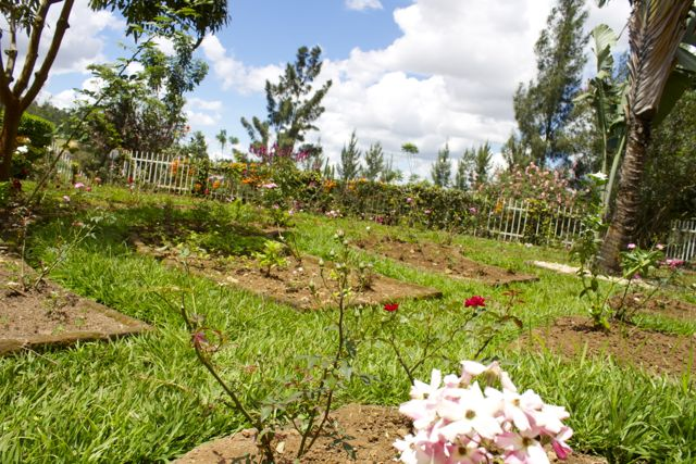 Memorial rose garden at the Kigali Genocide Memorial Centre in Rwanda