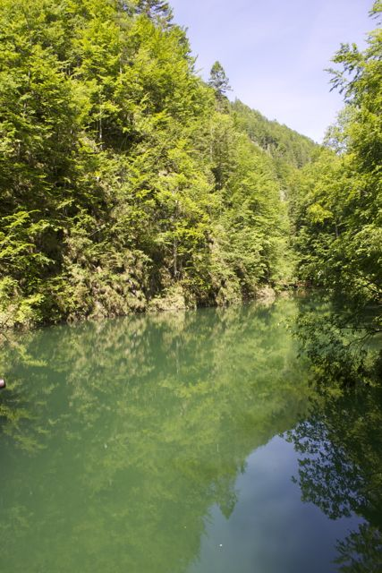 Crystal clear lake along the HOLZweg hiking path in Mostviertel, Austria