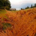 Fall Hiking in Triglav National Park Slovenia:  A Photojourney