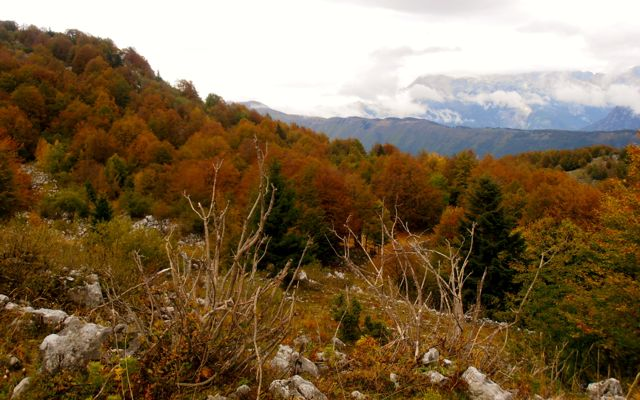 Fall is an especially beautiful time to hike Monte Matajur.