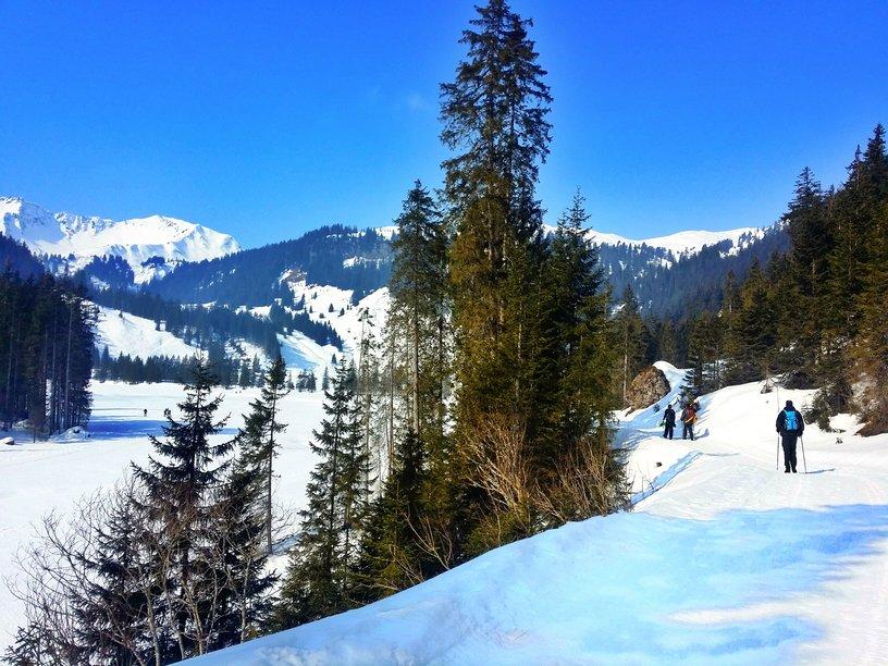 hiking trail and mountains in Kleinwalsertal Austria