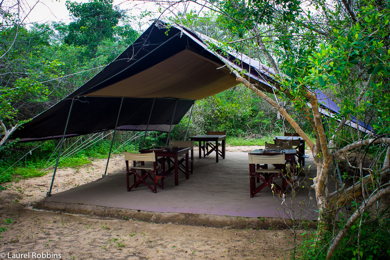Wild Trails Yala tented safaris in Sri Lanka