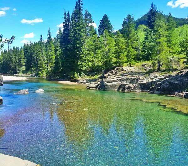 crystal clear water stream in Castle Wilderness, an area is southwestern Alberta