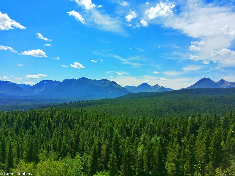 Castle Crown Wilderness is a 1000 square kms of mountains, lakes, forests and grasslands found in southern Alberta. It's a nature lovers paradise.