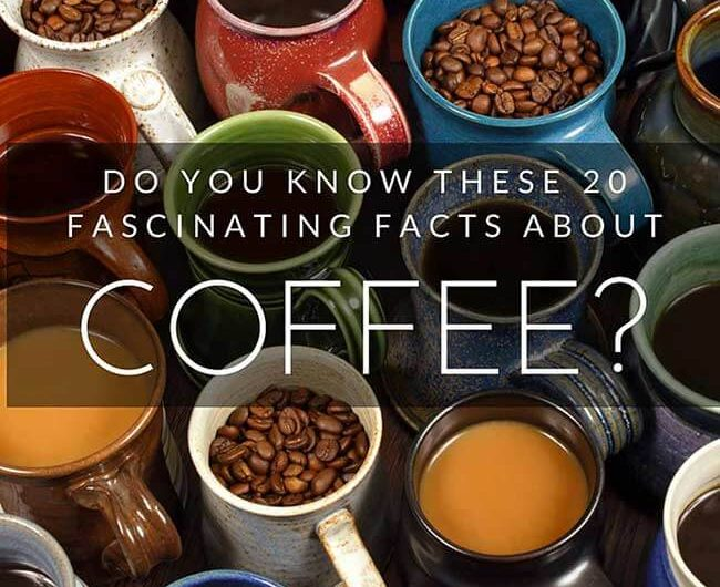20 coffee facts that every connoisseur should know