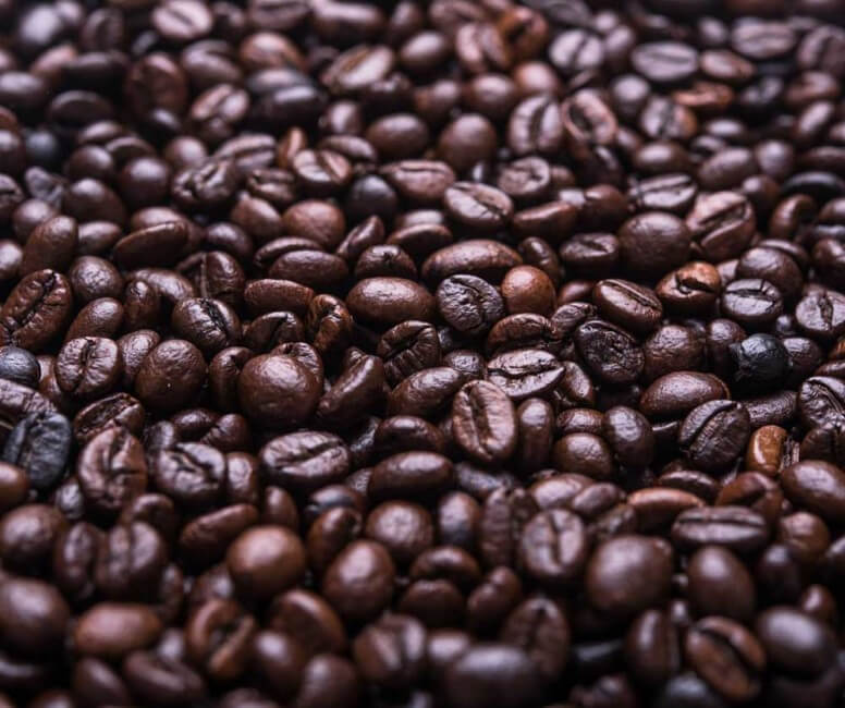 coffee facts about coffee beans