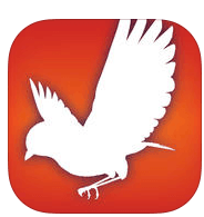 Audubon Bird Guide App is a nice accompaniment when you