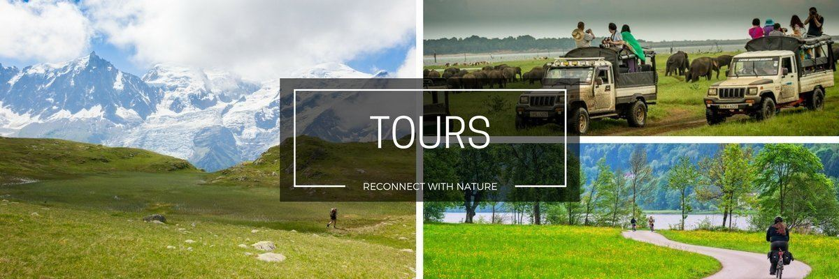 connect with nature with these hiking, cycling and wildlife tours