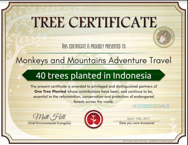 one_tree_planted_certificate