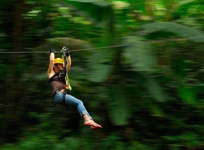 Canopy_tour