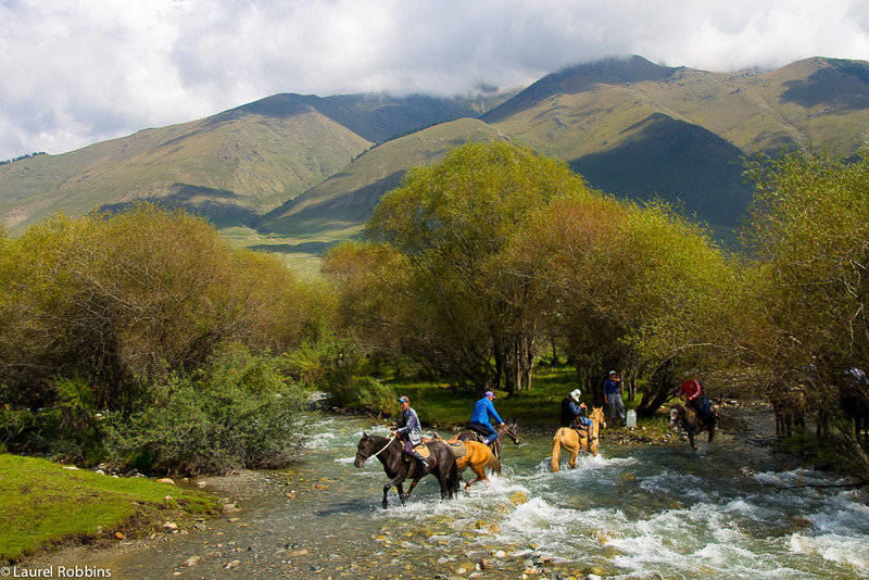 Horses crossing the river in the summer pastures of Jai Loo in Kyrgyzstan.