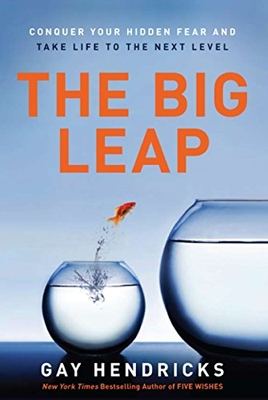 the_big_leap_book