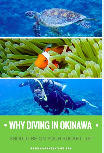 divers will love the coral reefs in the Kerama Islands in Okinawa Japan that attract many different species of fish