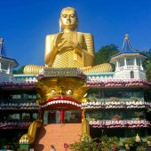 why you should travel to Sri Lanka-7
