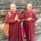 why you should travel to Sri Lanka-8
