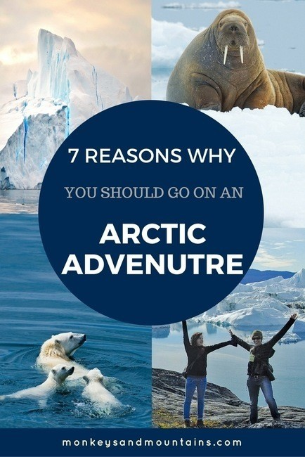 reasons to go on and arctic adventure