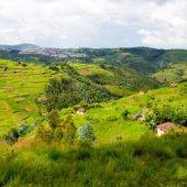 rsz_rwanda_photos
