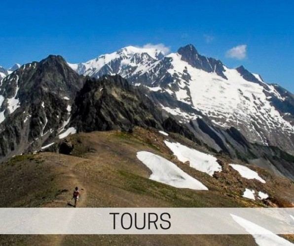 choose from hiking, cycling or wildlife tours