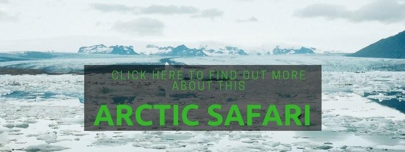 how to make your Arctic adventure happen