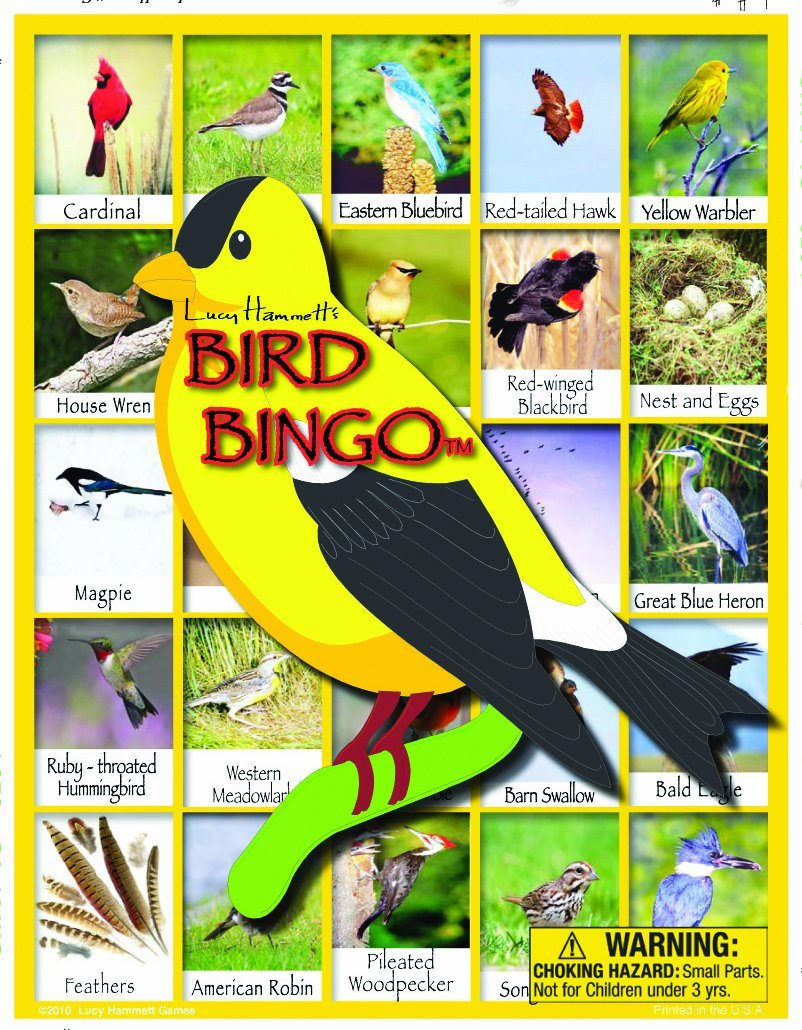 Bird Bingo Board Game Christmas gift guide