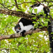 Madagascar travel nature culture