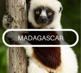 travel advice for adventures in Madagascar