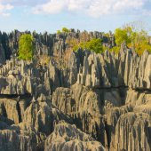 how many of these 15 Madagascar facts do you know?