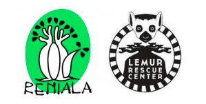 ONG Lemur Rescue Center in Madagascar