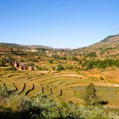 Madagascar travel nature culture-45