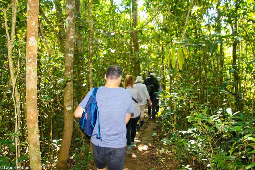 Madagascar travel to see lemurs-57
