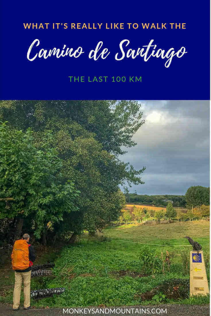 the last 100 km of the French Way Camino in Galicia, Spain