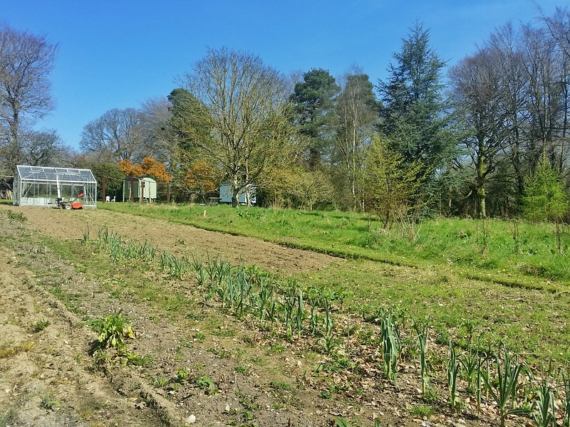 Large vegetable garden at Blackstairs Eco Trails in Ireland.
