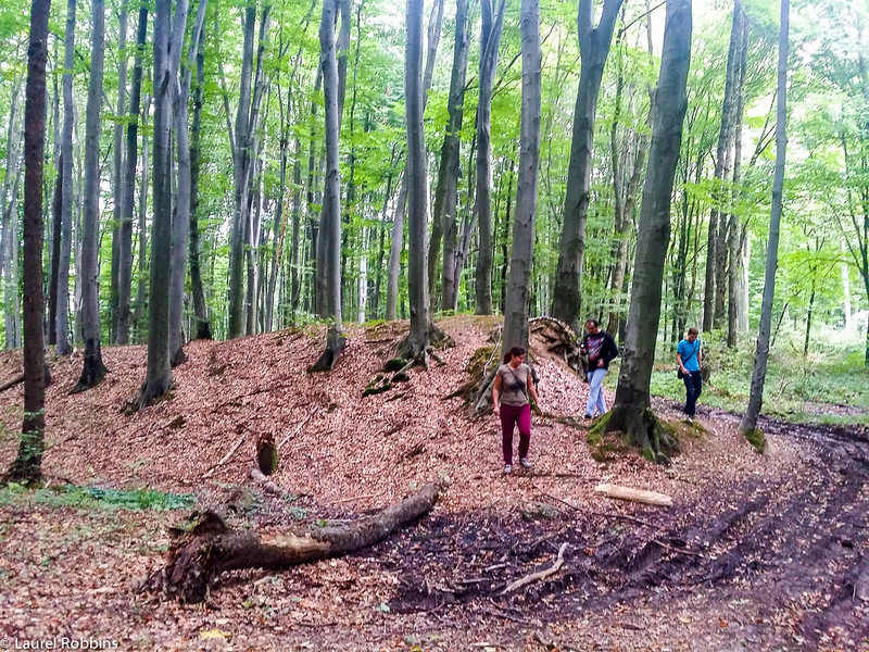 these mounds of dirt were part of a 10km long defensive structure dating back to the 9th/11th century in the Ukrainian Carpathian mountains.