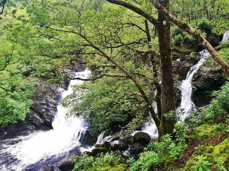 Day 3 Inversnaid Waterfall is a highlight while walking along Loch Lomond.