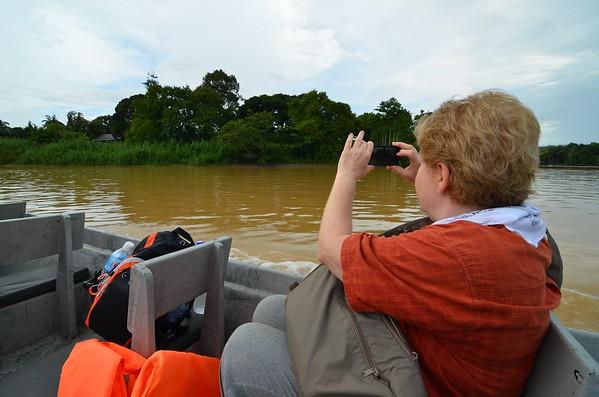 Leyla in search of the elusive proboscis monkeys in the Lower Kinabatangan
