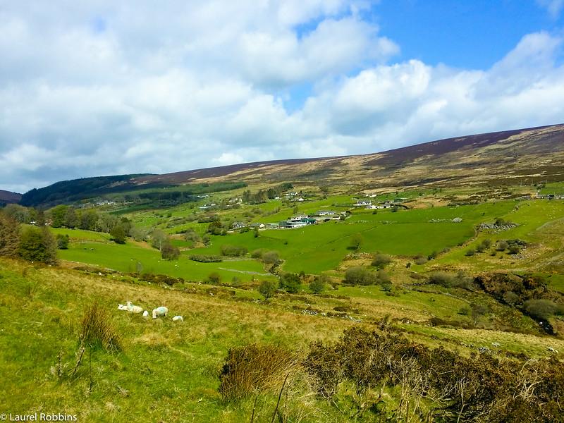 Valley in Glencullen just outside of Dublin.
