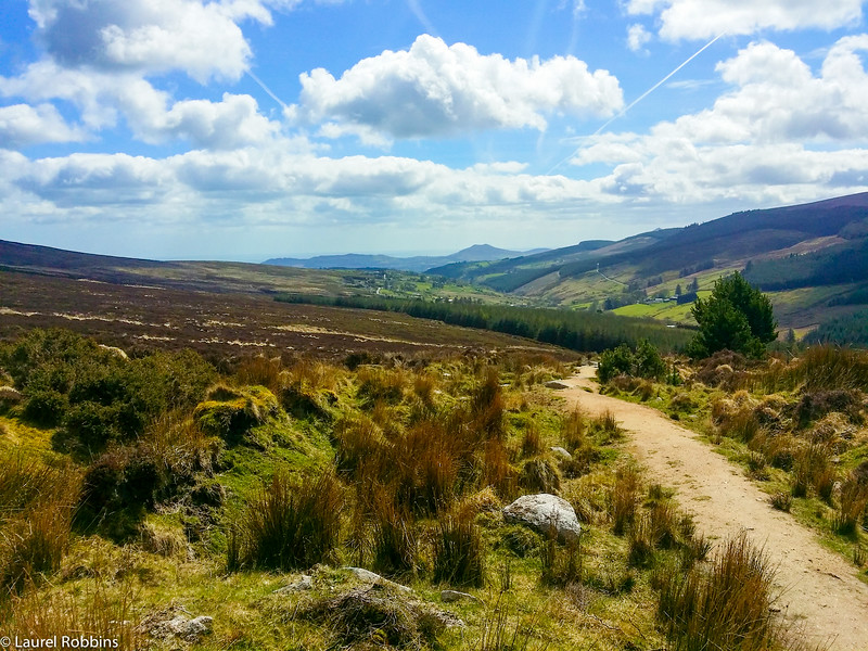Walking the Wicklow Way from Enniskerry to Marlay Park, Dublin