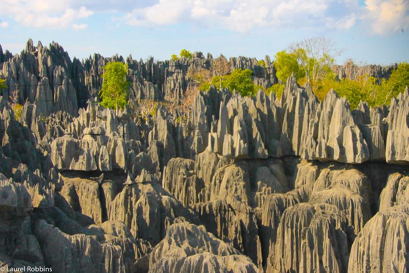 Madagascar facts: Madagascar has 3 UNESCO sites, including the Tsingy