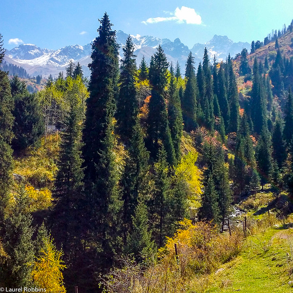 Landscape while hiking up to Shymbulak Ski Resort in the Tien Shan Mountains.