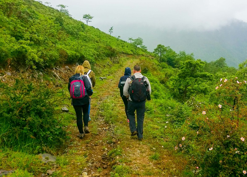 Walking a short section of the Camino Lebaniego in Cantabria.